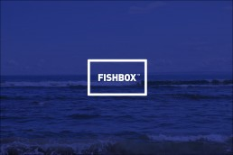 Fishbox food and drink ecommerce branding and design